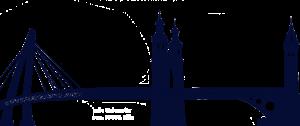 bridge project - programme international
