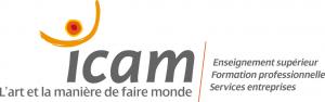 logo de ICAM